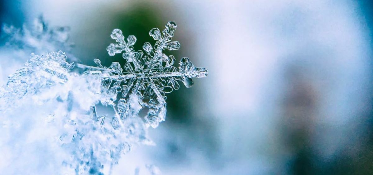 Close up of a snowflake | free readability test